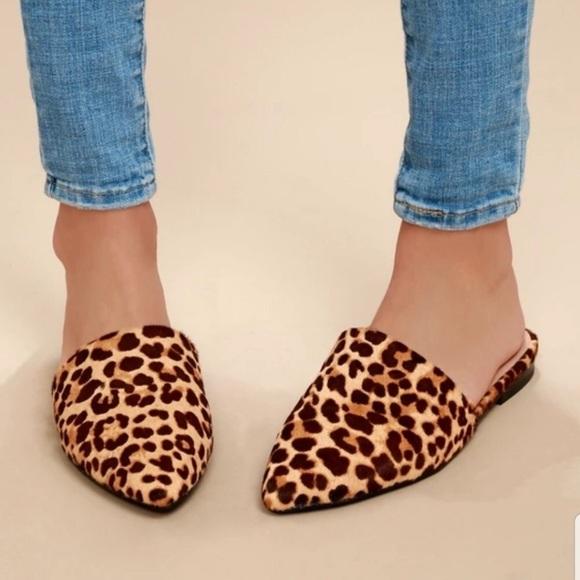 Steve Madden Shoes | Leopard Mules
